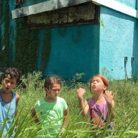 A24 releases first trailer for The Florida Project