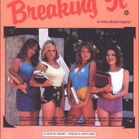 Breaking It... A Story About Virgins
